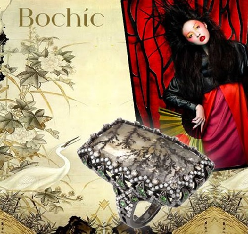 Following Bochic rings