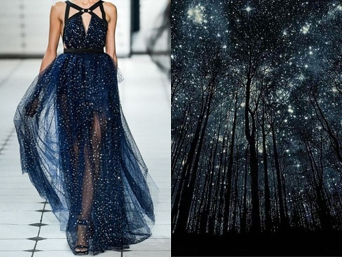 Jason Wu Spring-Summer 2013. Starry night Silhouettes by Harry Finder. Fashion & Nature project by Russian designer Liliya Hudyakova