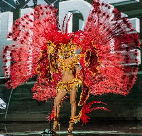 Commenting this Dominican outfit of Clarissa Molina, mostly wrote about Victoria secret, other people wrote - You killed 1000 peacocks for you're national costume