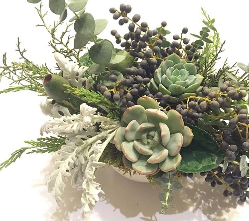 Susan McLeary Living Jewellery. Succulent composition