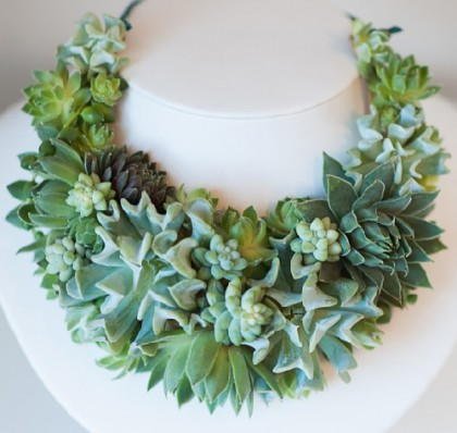 When nature is co-author. Succulent necklace
