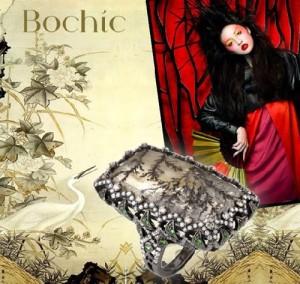 Following Bochic rings