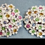 Beautiful brooch and clips