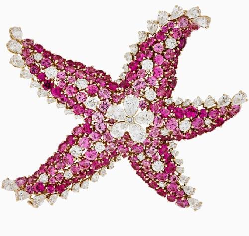 Starfish. Precious jewelry collection Seven Seas