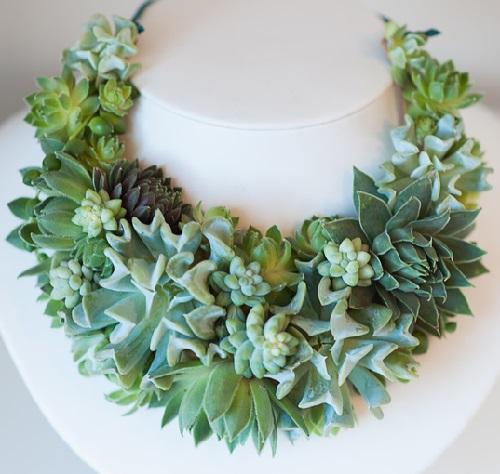 When nature is co-author. Succulent necklace