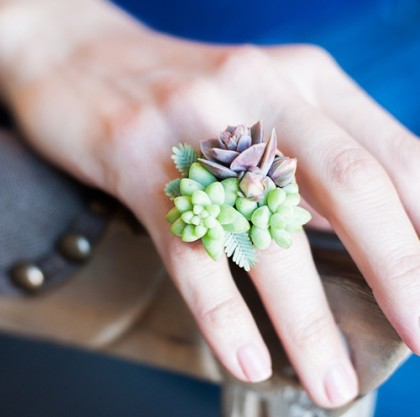 Beautiful Succulent ring
