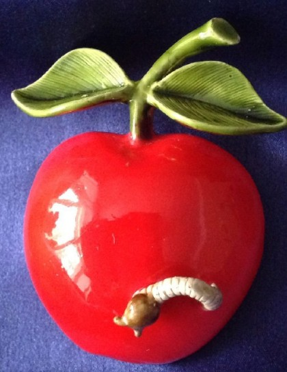 Red Apple and worm