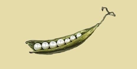Pea brooch-pendant