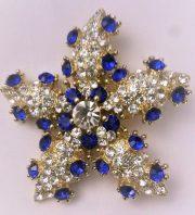Starfish brooch
