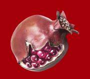 Pomegranate brooch, rubellite, diamonds, copper, silver, gold