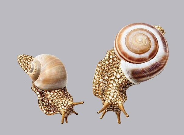 Snail brooches. 18 K white gold, titanium, colored diamonds