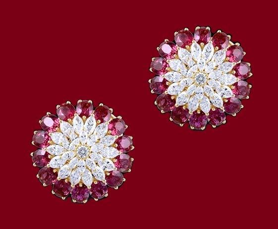 All Diamond & Ruby Earring