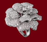 Rose ring set in 18k white gold and diamond