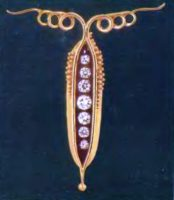 Gold necklace in the form of a pea pod with freely hung diamond peas