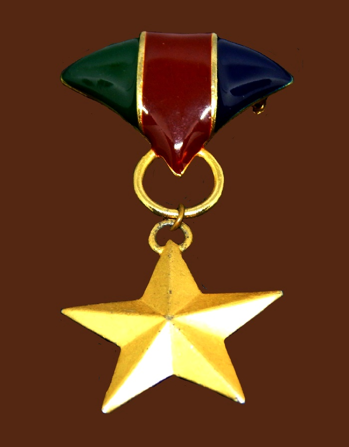 Star medal brooch pendant. Gold tone jewelry alloy, enamel