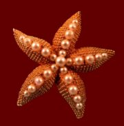 Starfish gold tone faux pearls brooch. 1950s