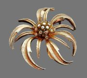 Chrisantemum vintage brooch of gold tone. 5.5 cm