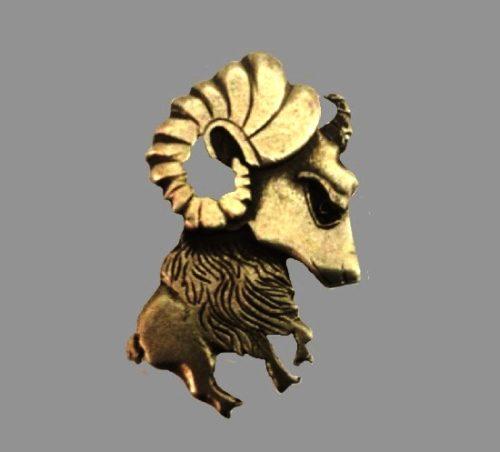Ram pin