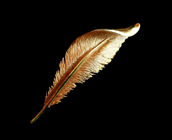 Feather brooch. Gold tone textured metal alloy. 8 cm. 1970s