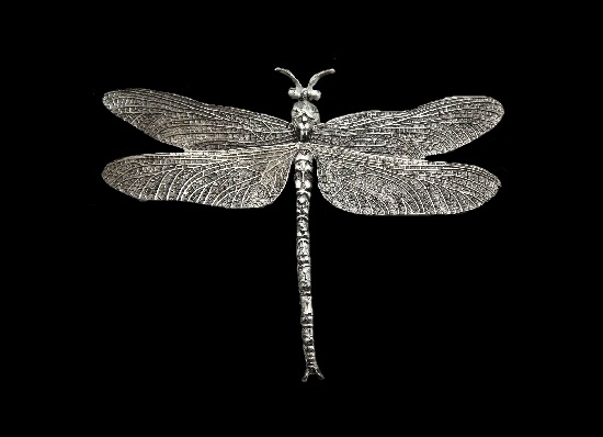 Dragonfly brooch. Textured silver. Inspired by Joris Hoefnagel drawing from the 16th century. 3.5 cm