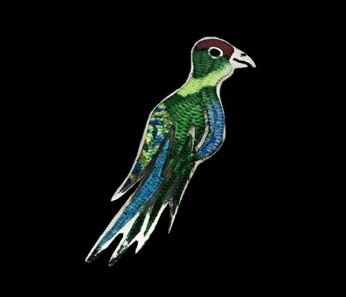 Parrot sterling silver enamel brooch